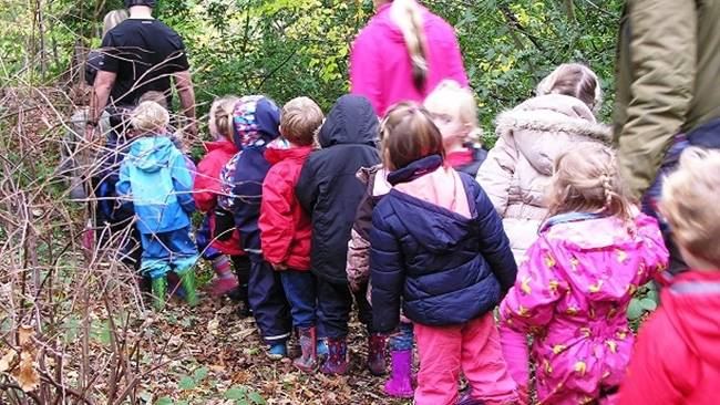 Under 5s Forest School - Friday mornings