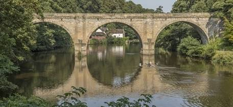 Stones of Durham: woodlands and riverbanks guided geology walk